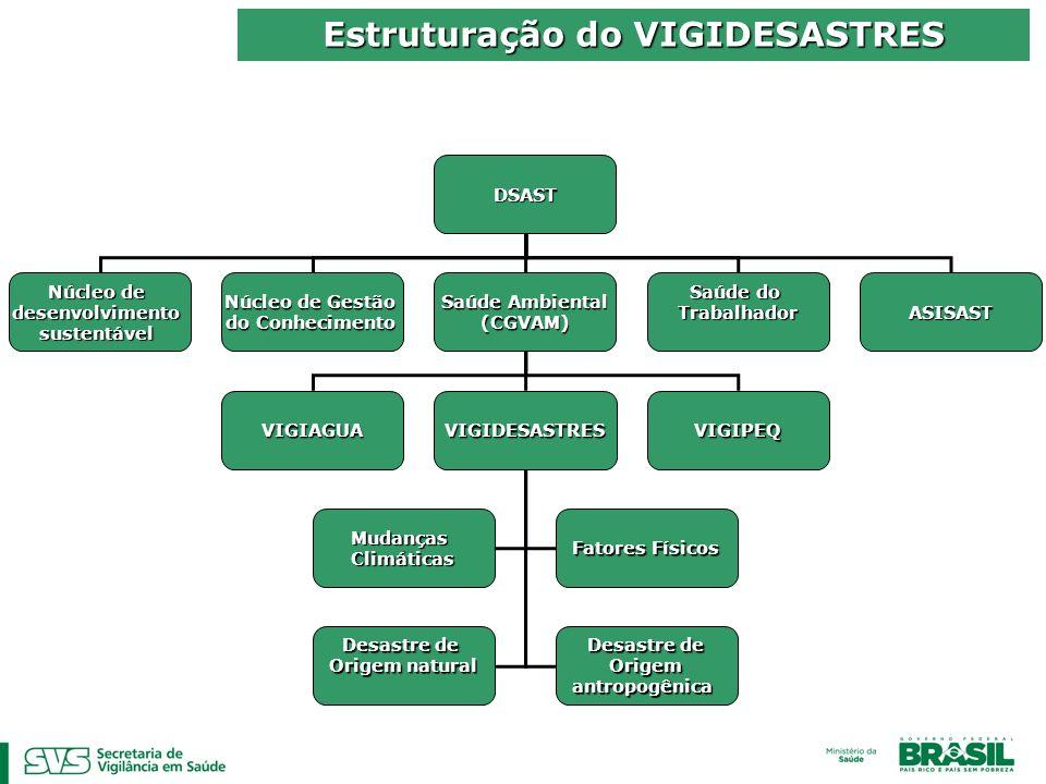 Estruturação do VIGIDESASTRES
