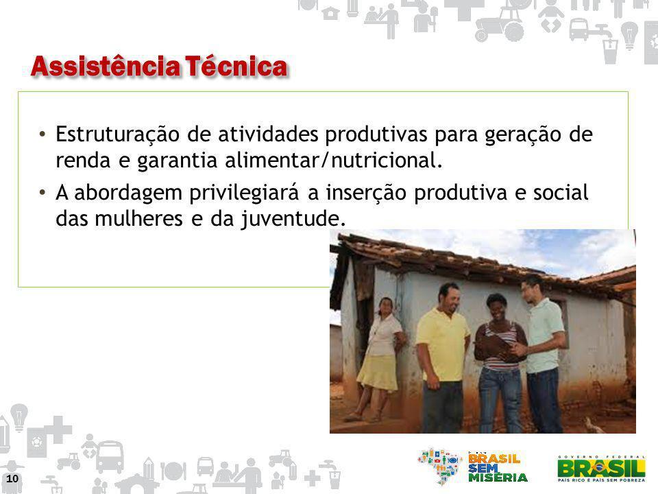 Assistência TécnicaEstruturação de atividades produtivas para geração de renda e garantia alimentar/nutricional.