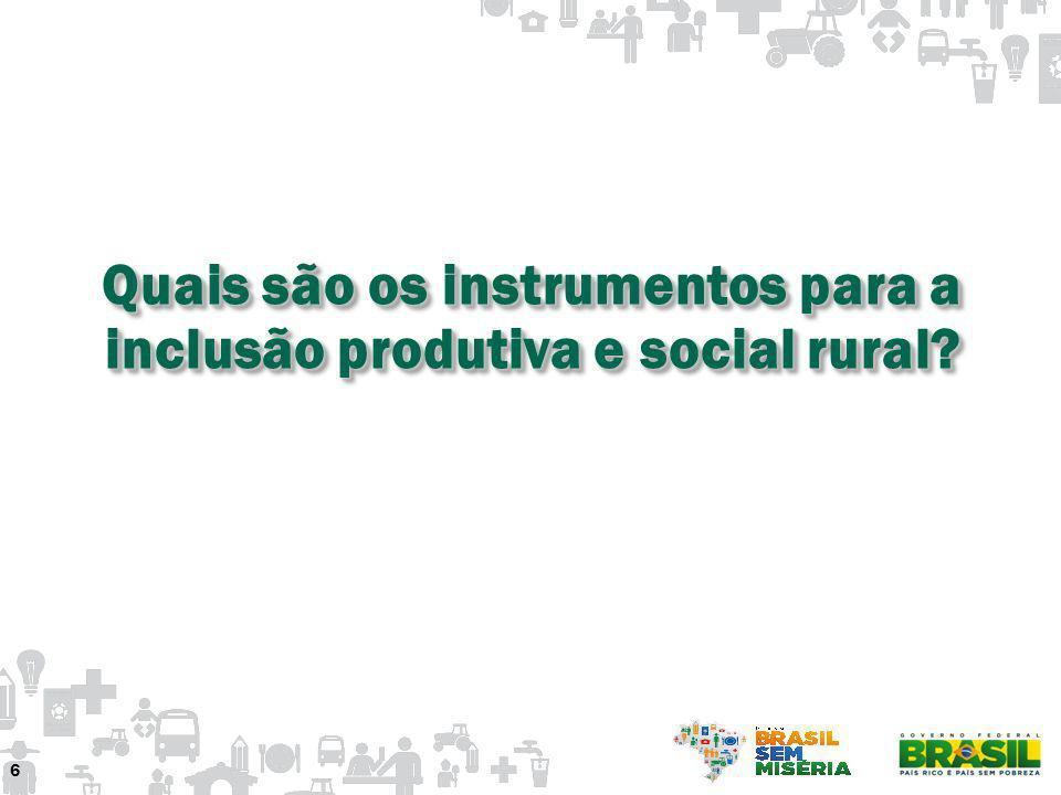 Quais são os instrumentos para a inclusão produtiva e social rural