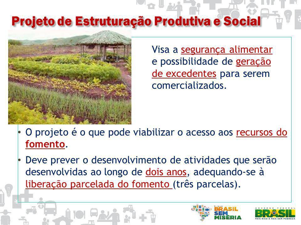 Projeto de Estruturação Produtiva e Social