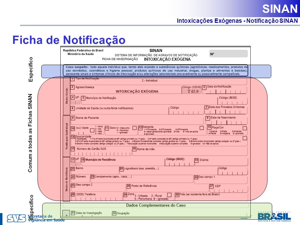 SINAN Ficha de Notificação Específico Comum a todas as Fichas SINAN