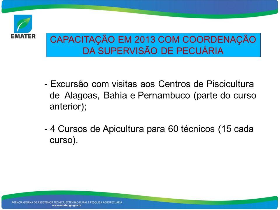 CAPACITAÇÃO EM 2013 COM COORDENAÇÃO DA SUPERVISÃO DE PECUÁRIA
