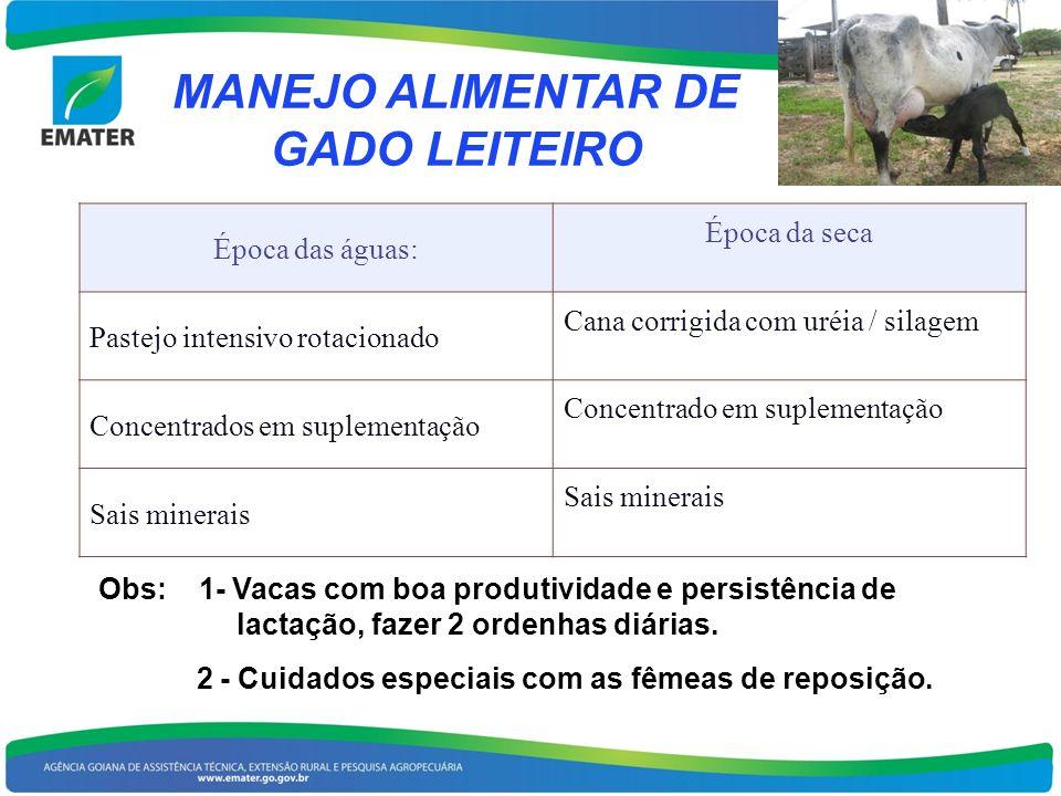 MANEJO ALIMENTAR DE GADO LEITEIRO