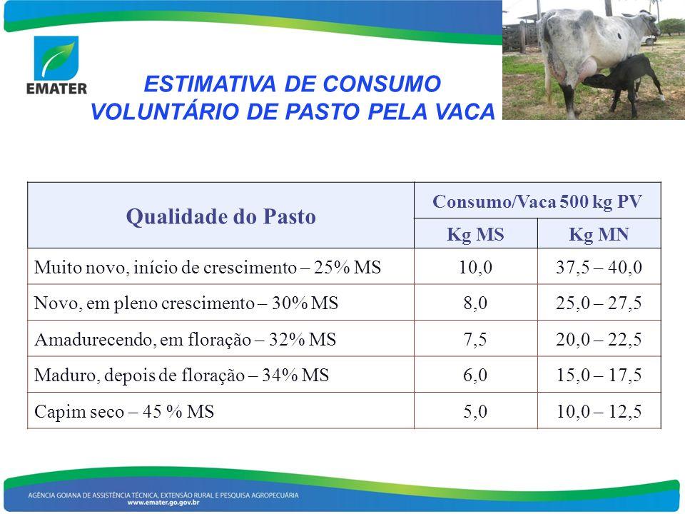 ESTIMATIVA DE CONSUMO VOLUNTÁRIO DE PASTO PELA VACA