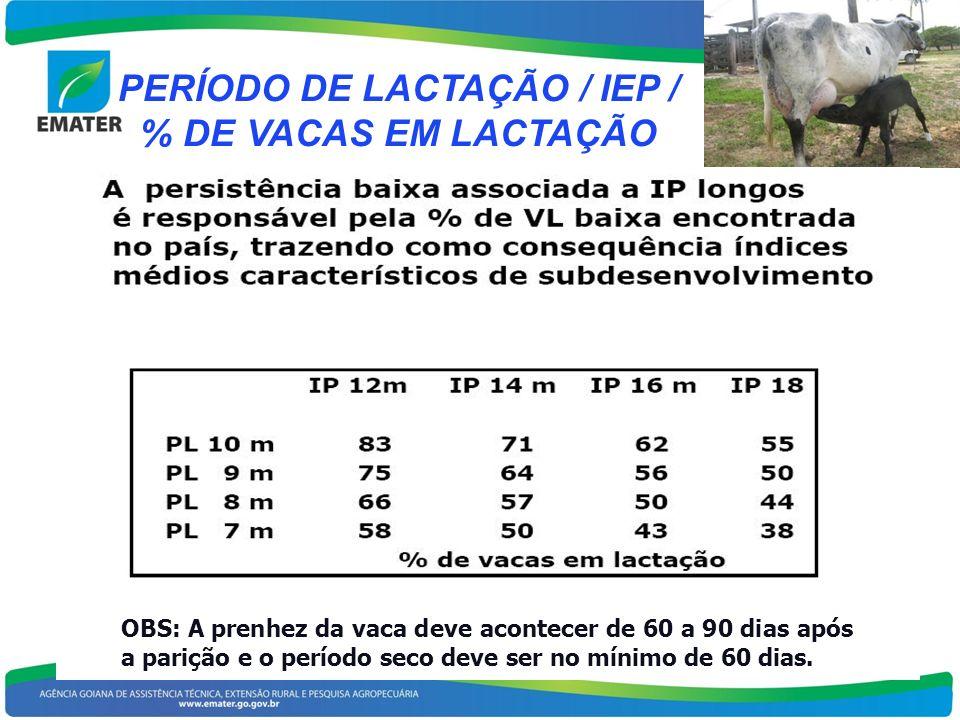 PERÍODO DE LACTAÇÃO / IEP / % DE VACAS EM LACTAÇÃO