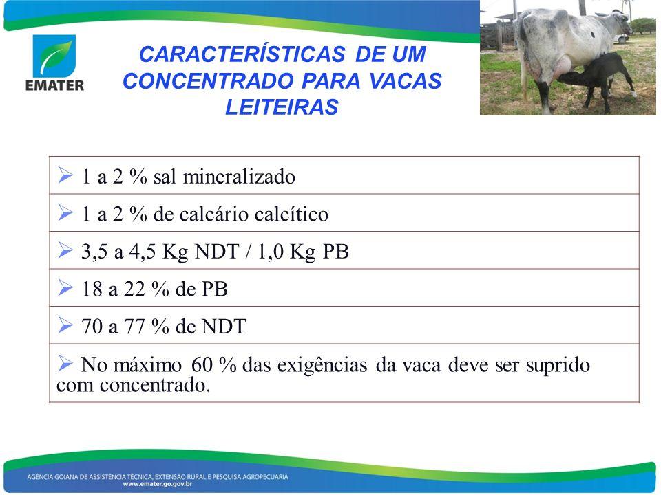 CARACTERÍSTICAS DE UM CONCENTRADO PARA VACAS LEITEIRAS