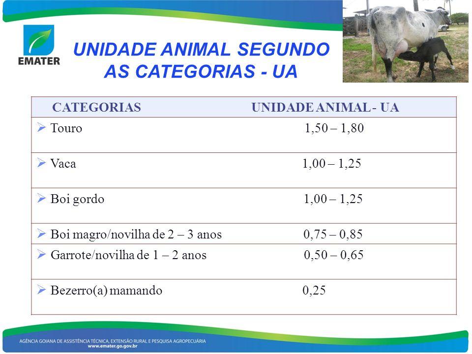 UNIDADE ANIMAL SEGUNDO