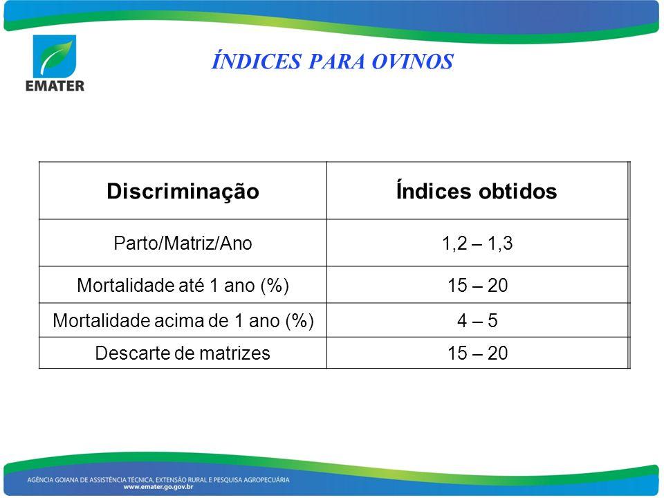 ÍNDICES PARA OVINOS Discriminação Índices obtidos Parto/Matriz/Ano