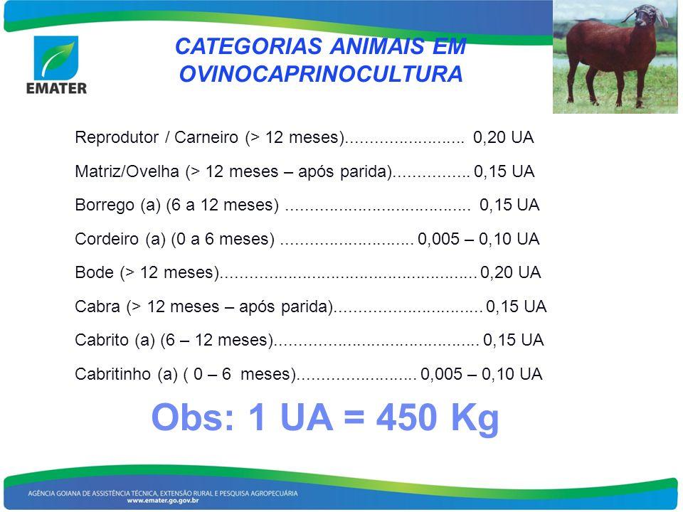 CATEGORIAS ANIMAIS EM OVINOCAPRINOCULTURA