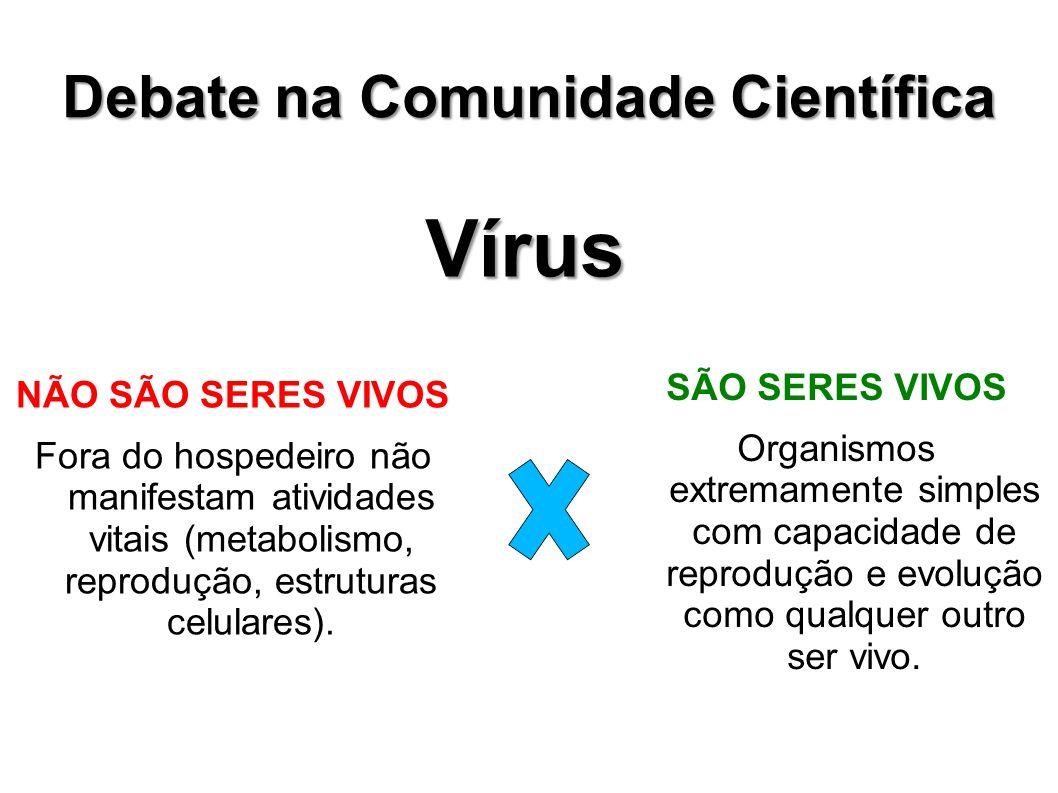 Debate na Comunidade Científica