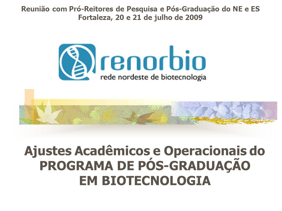 Ajustes Acadêmicos e Operacionais do PROGRAMA DE PÓS-GRADUAÇÃO