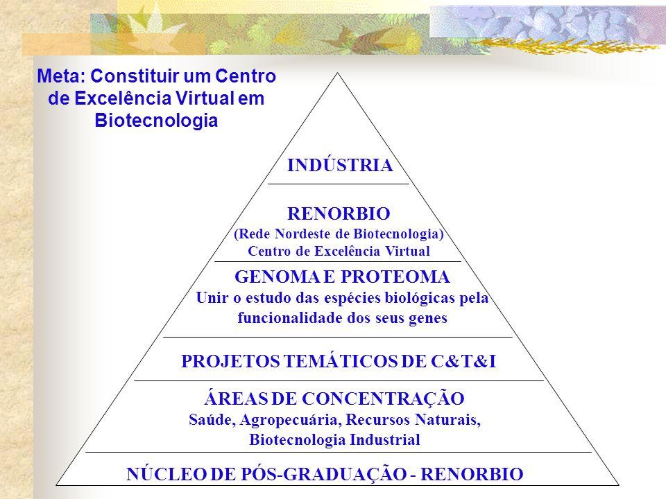 Meta: Constituir um Centro de Excelência Virtual em Biotecnologia