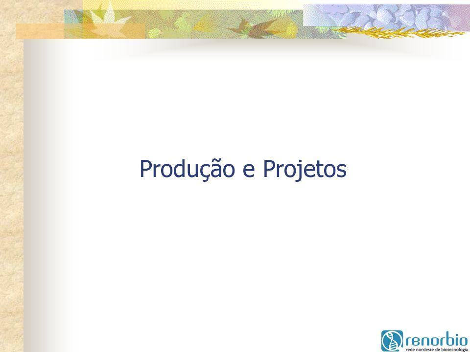 Produção e Projetos