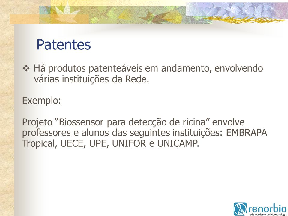 Patentes Há produtos patenteáveis em andamento, envolvendo