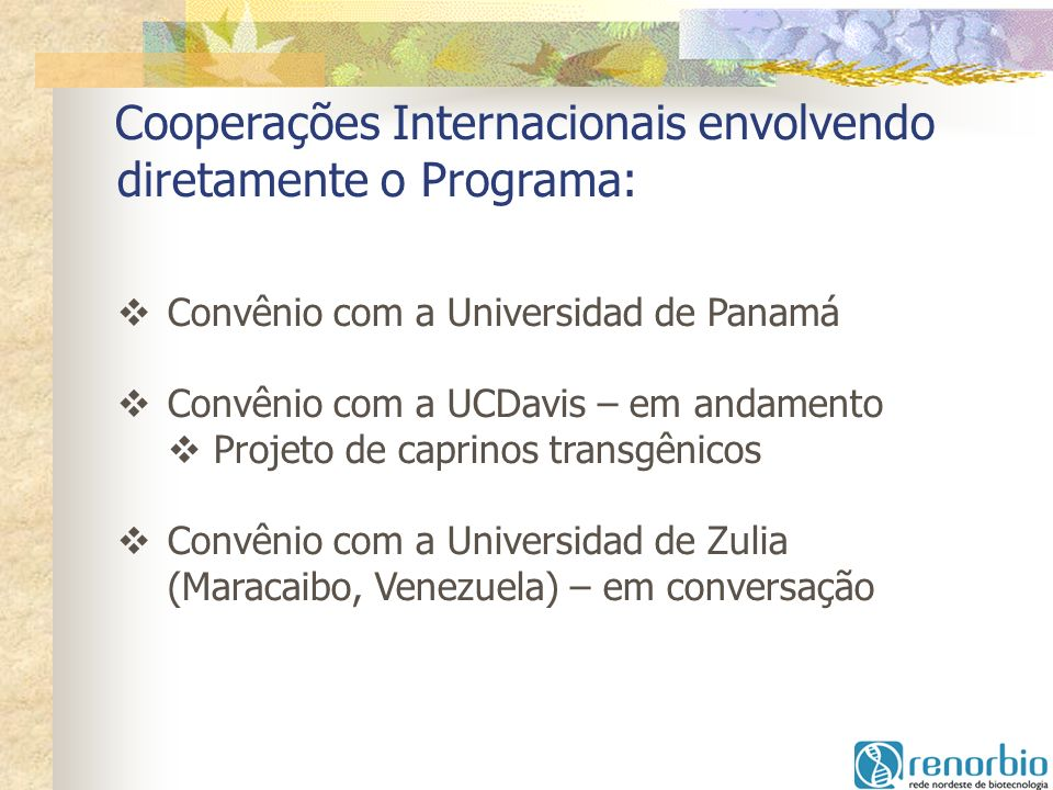 Cooperações Internacionais envolvendo diretamente o Programa: