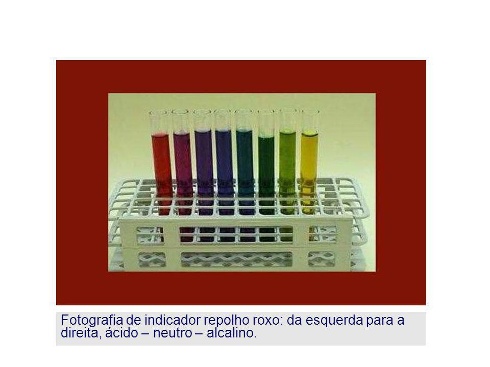 Fotografia de indicador repolho roxo: da esquerda para a direita, ácido – neutro – alcalino.