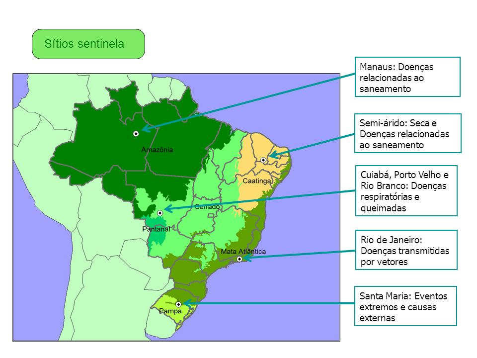Sítios sentinela Manaus: Doenças relacionadas ao saneamento