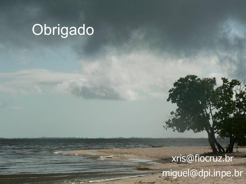 Obrigado xris@fiocruz.br miguel@dpi.inpe.br