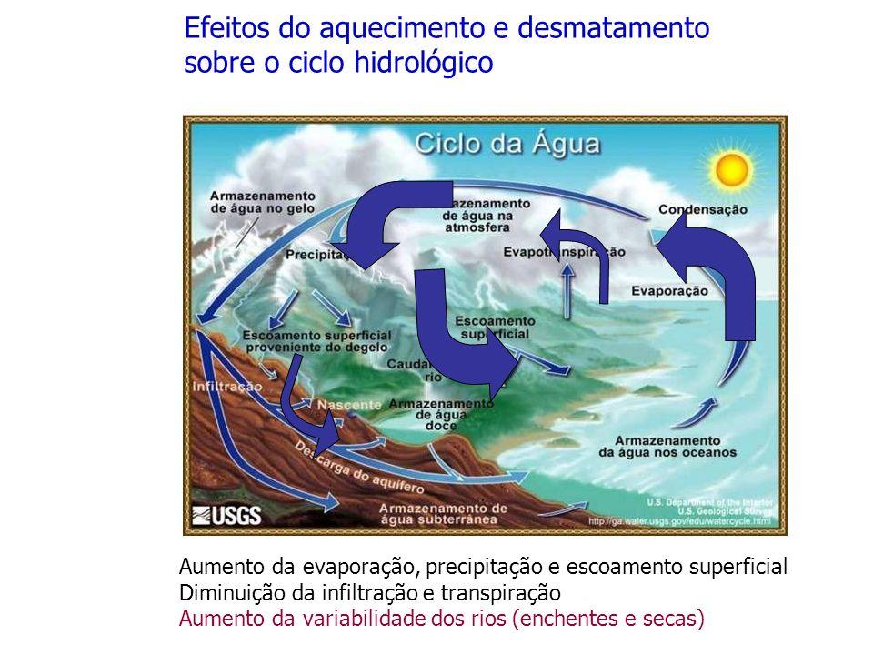 Efeitos do aquecimento e desmatamento sobre o ciclo hidrológico