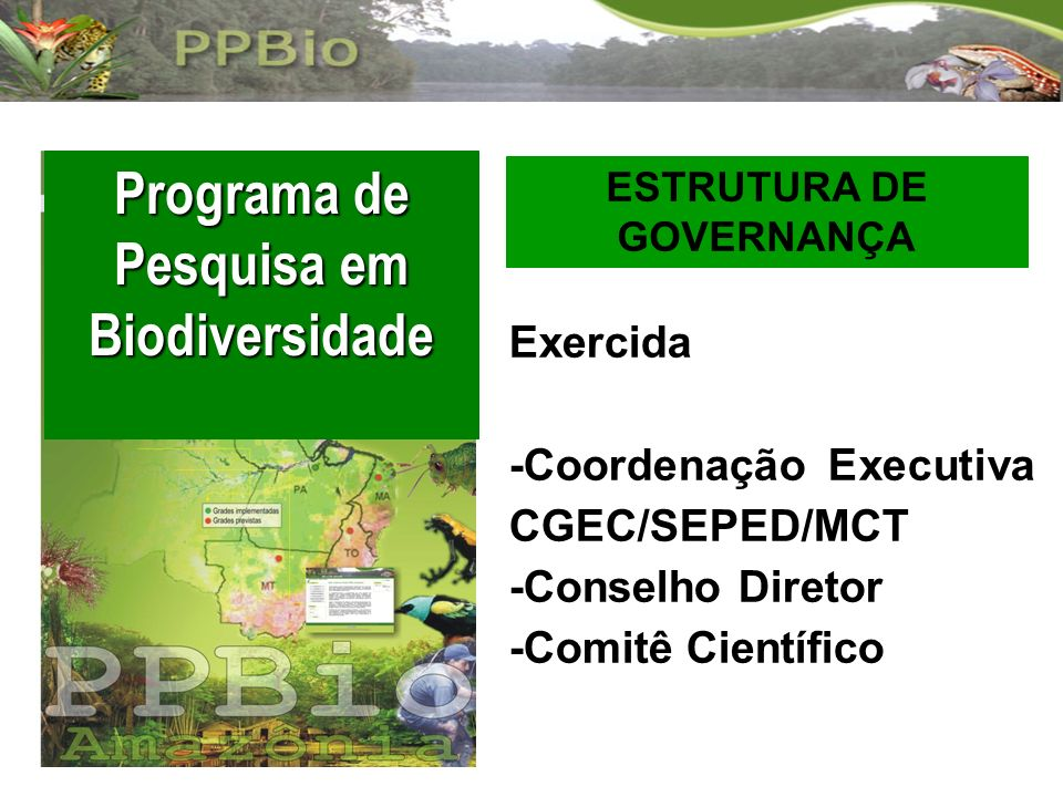 Programa de Pesquisa em Biodiversidade ESTRUTURA DE GOVERNANÇA