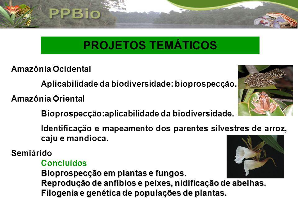 PROJETOS TEMÁTICOS Amazônia Ocidental