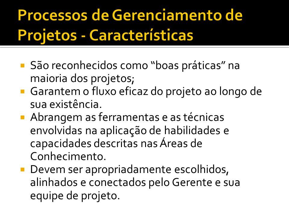Processos de Gerenciamento de Projetos - Características