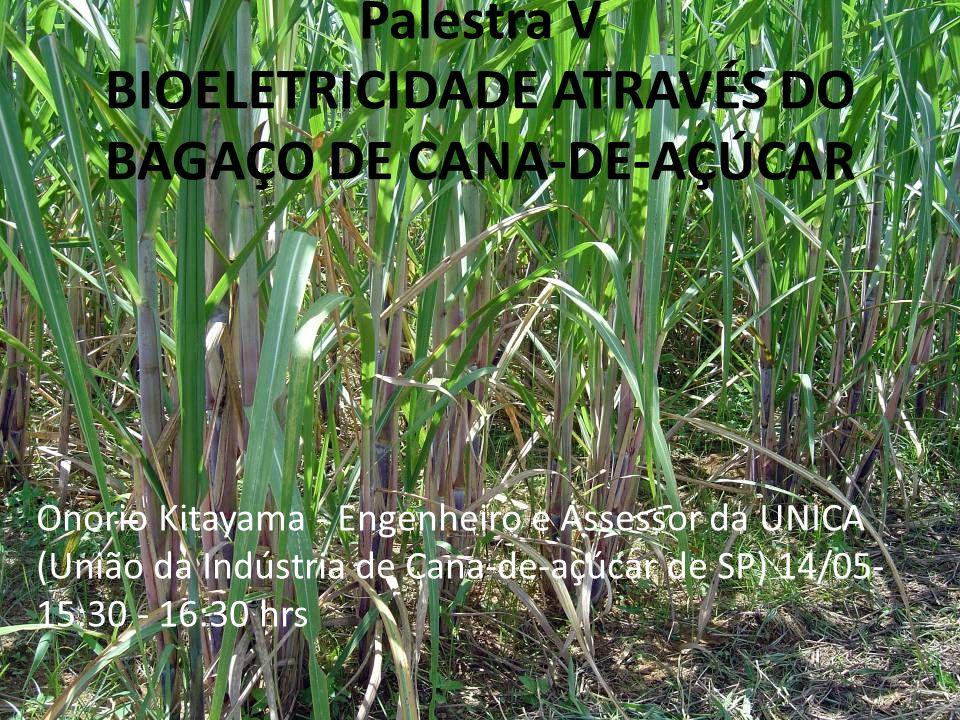 Palestra V BIOELETRICIDADE ATRAVÉS DO BAGAÇO DE CANA-DE-AÇÚCAR