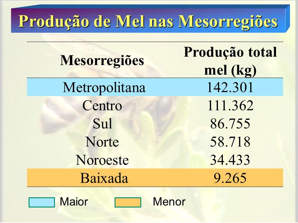 Produção de Mel nas Mesorregiões Produção total mel (kg)
