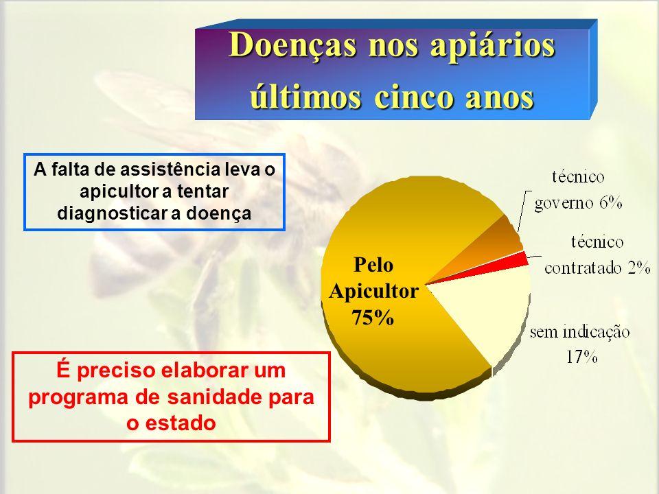 Doenças nos apiários últimos cinco anos