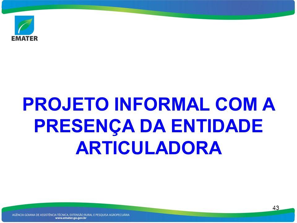 PROJETO INFORMAL COM A PRESENÇA DA ENTIDADE ARTICULADORA