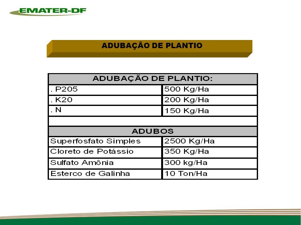 ADUBAÇÃO DE PLANTIO