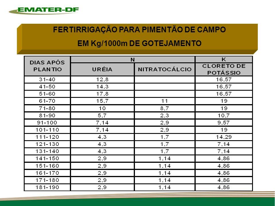 FERTIRRIGAÇÃO PARA PIMENTÃO DE CAMPO