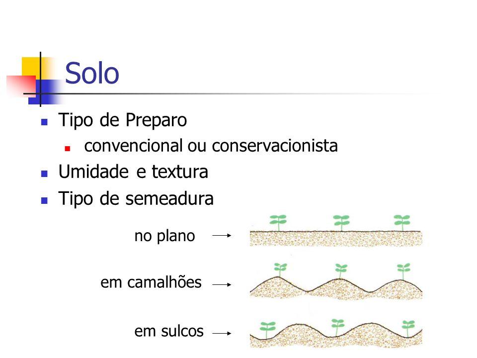 Solo Tipo de Preparo Umidade e textura Tipo de semeadura