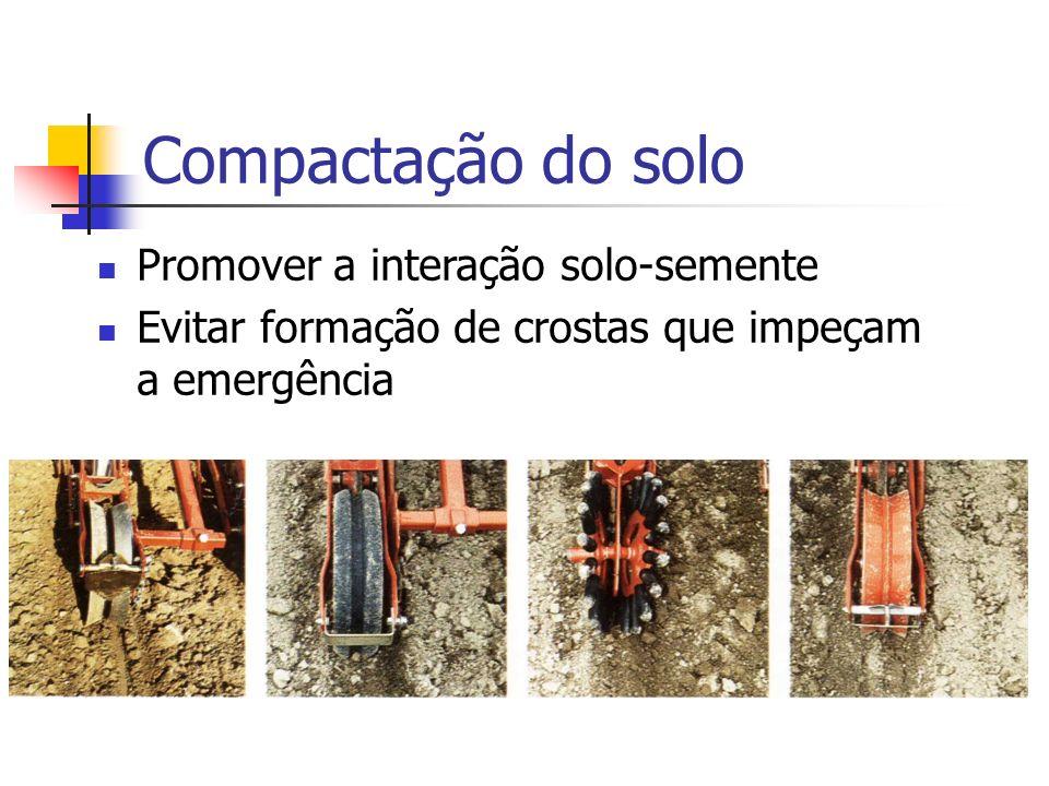 Compactação do solo Promover a interação solo-semente