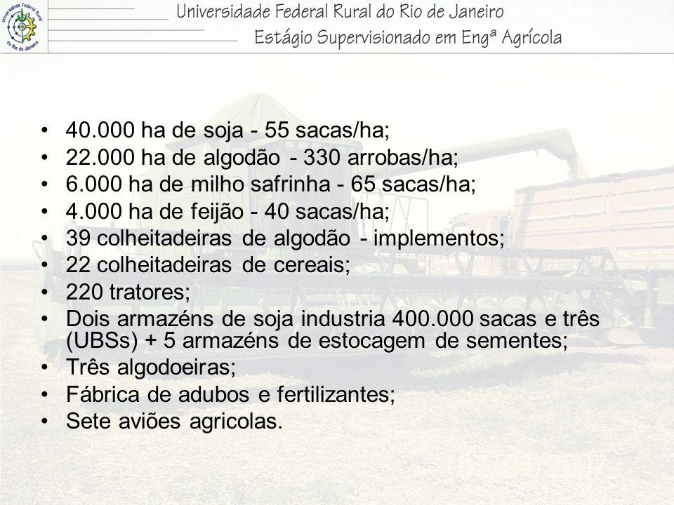 40.000 ha de soja - 55 sacas/ha;22.000 ha de algodão - 330 arrobas/ha; 6.000 ha de milho safrinha - 65 sacas/ha;