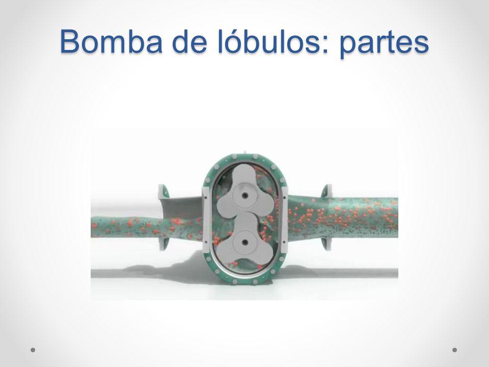 Bomba de lóbulos: partes