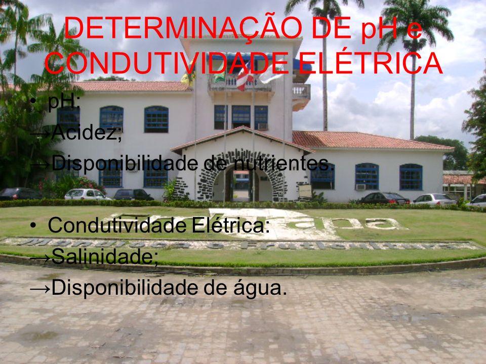DETERMINAÇÃO DE pH e CONDUTIVIDADE ELÉTRICA