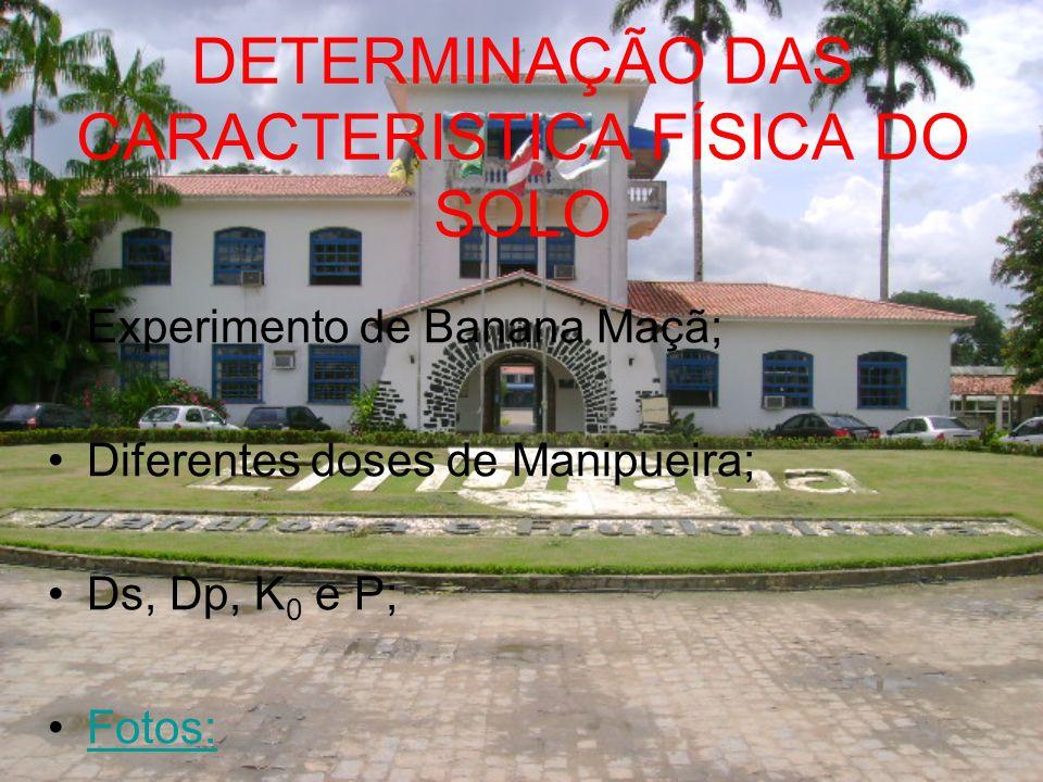 DETERMINAÇÃO DAS CARACTERISTICA FÍSICA DO SOLO