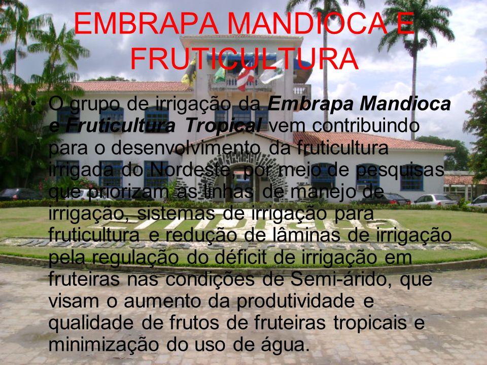 EMBRAPA MANDIOCA E FRUTICULTURA