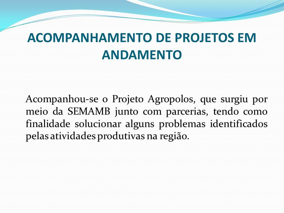 ACOMPANHAMENTO DE PROJETOS EM ANDAMENTO