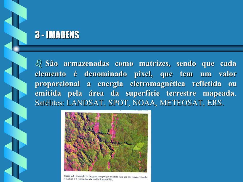 3 - IMAGENS