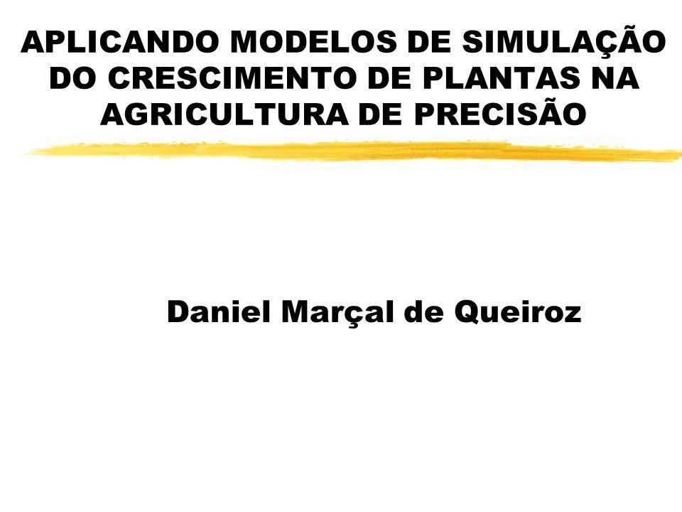 Daniel Marçal de Queiroz