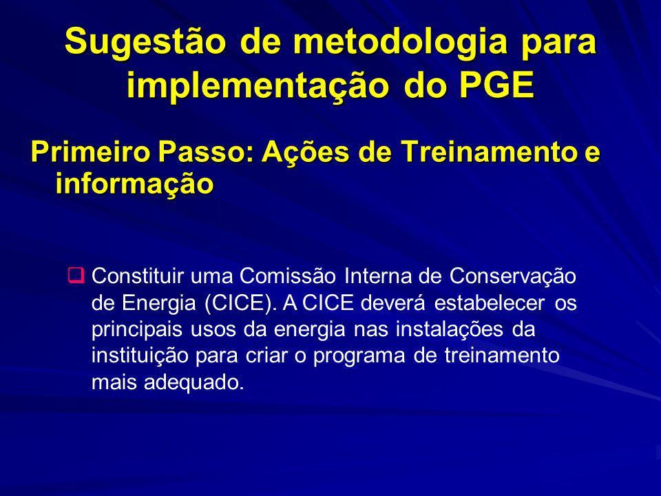 Sugestão de metodologia para implementação do PGE