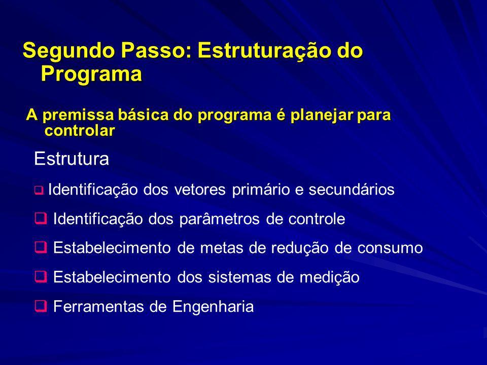 Segundo Passo: Estruturação do Programa
