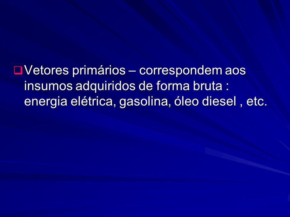Vetores primários – correspondem aos insumos adquiridos de forma bruta : energia elétrica, gasolina, óleo diesel , etc.