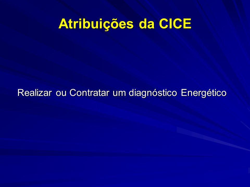 Atribuições da CICE Realizar ou Contratar um diagnóstico Energético