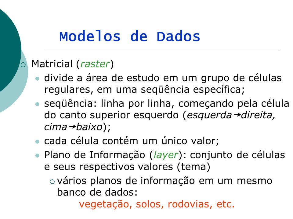Modelos de Dados Matricial (raster)