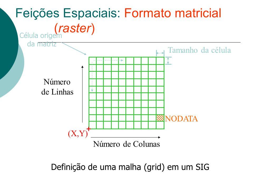 Feições Espaciais: Formato matricial (raster)