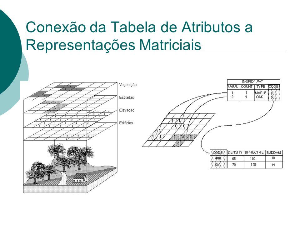 Conexão da Tabela de Atributos a Representações Matriciais