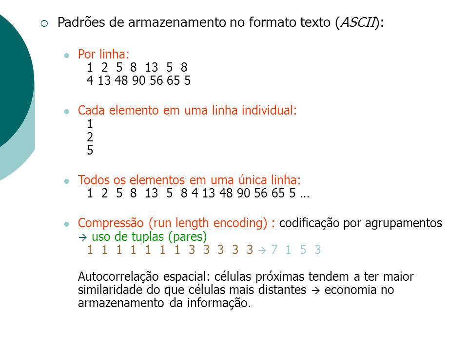 Padrões de armazenamento no formato texto (ASCII):